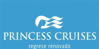 princess invertour 22.5 x 16 cm salida.ai