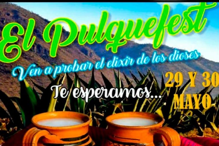 pulque-fest-2