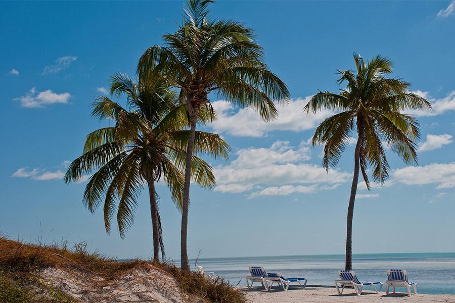 Paradise Coast Caribbean Beach Tropical Sea